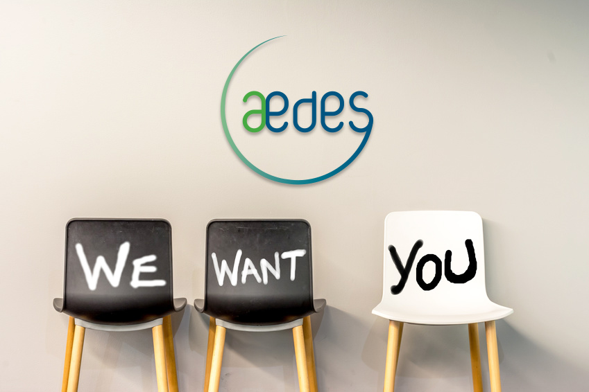 aedes_job
