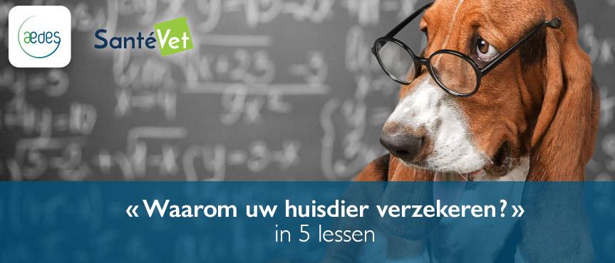 lecon_nl